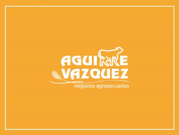 Aguirre Vazquez